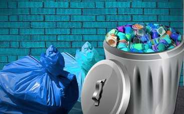 Какой мусор можно сдавать на переработку: как это сделать правильно