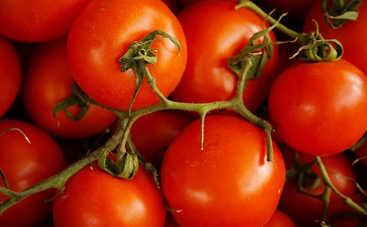 Почему цены на овощи бьют все рекорды?