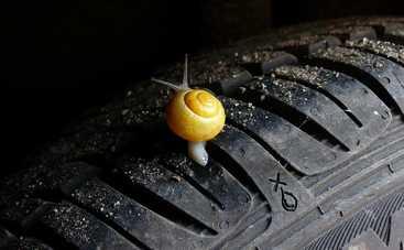Как узнать, что шины износились: 4 главные признака