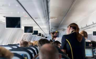 Еда в самолете: что можно брать с собой