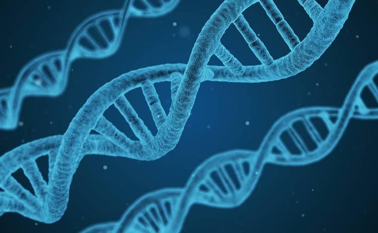 Ученые обнаружили у некоторых склонность к раку