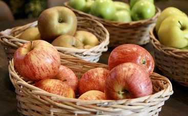 Яблочный Спас: что обязательно должна сделать женщина в этот день, запреты праздника