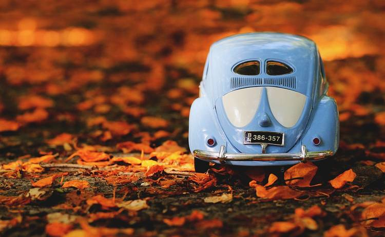 Что нужно обязательно сделать с автомобилем перед осенним периодом