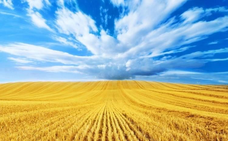 День независимости Украины 2019: поздравления в стихах и прозе