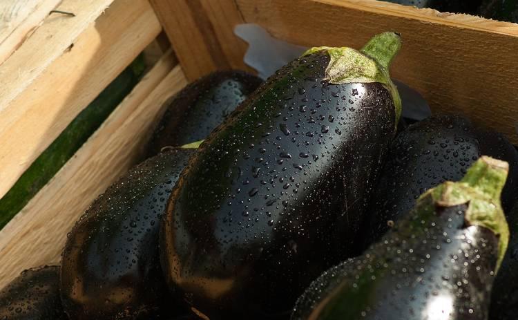 Пикантный салат с баклажанами (рецепт)