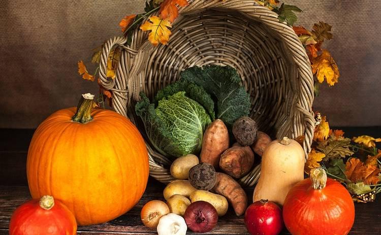 Какие продукты полезно кушать в осенний период
