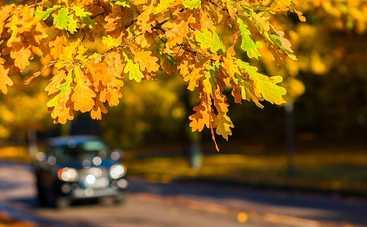 Как автомобилисту подготовить авто к осени: полезные советы