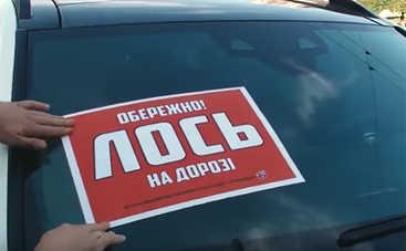 Активисты программы «Останови Лося» заставили извиняться нарушителей парковки