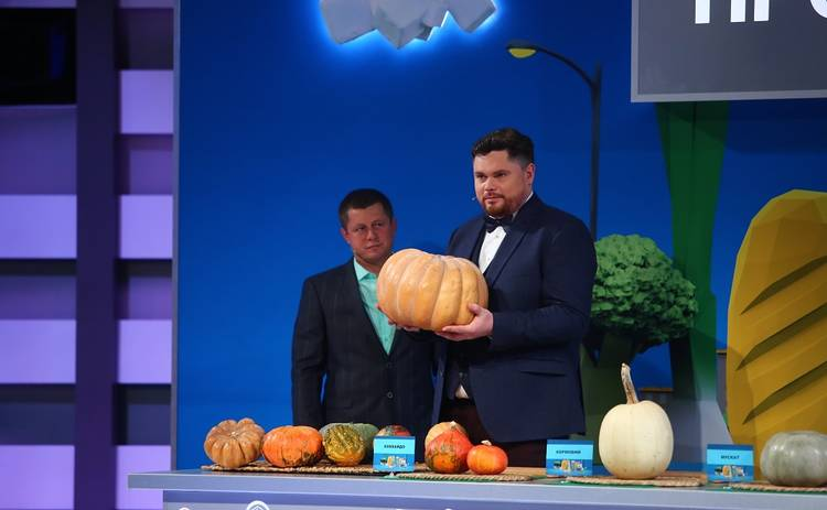 Полезная программа: смотреть выпуск онлайн (эфир от 23.10.2019)