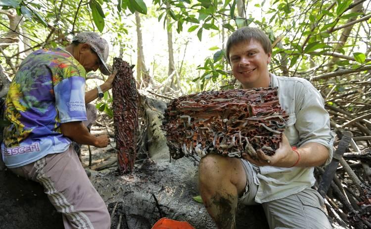 Мир наизнанку: Дмитрий Комаров съест самый страшный гастрономический деликатес Бразилии