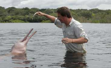 Мир наизнанку: Дмитрий Комаров в опасных водах Амазонки отыскал редких розовых дельфинов