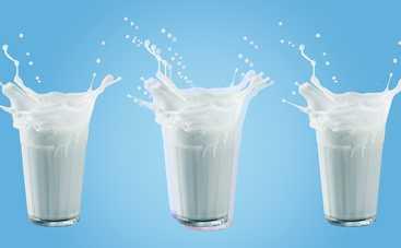 Так ли оно полезно: все, чего вы не знали о молоке раньше