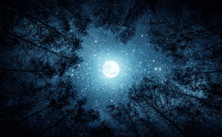Лунный календарь: гороскоп на 22 ноября 2019 года для всех знаков Зодиака