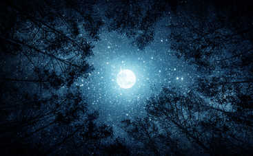 Лунный гороскоп на 29 ноября 2019 года для всех знаков Зодиака