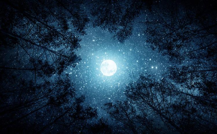 Лунный календарь: гороскоп на 29 ноября 2019 года для всех знаков Зодиака