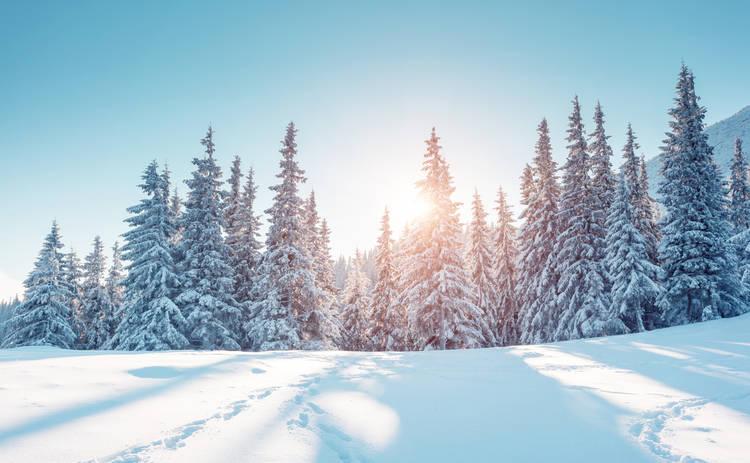 Магнитные бури 5 декабря 2019: чего ожидать украинцам