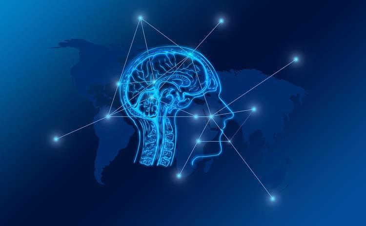 Запускаем мозг: ТОП-5 продуктов для активной работы