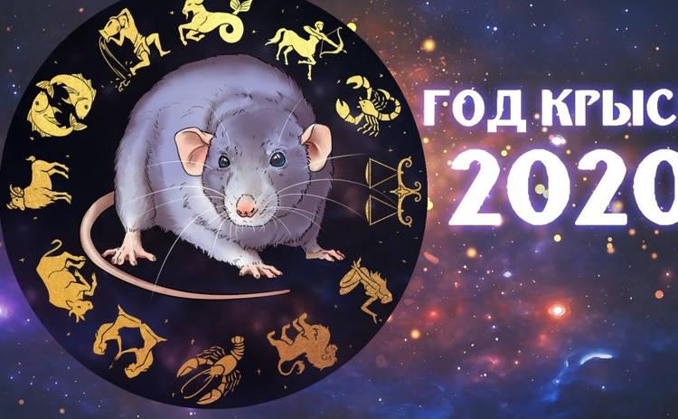 Восточный гороскоп: 2020 год Крыса поможет провести с умом
