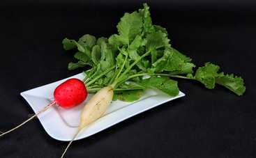 Салат из редьки с орехами (рецепт)