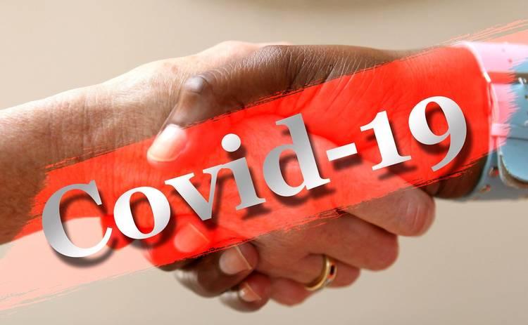 Правила и альтернативы приветствий во время эпидемии коронавируса: этикет политиков в разных странах мира