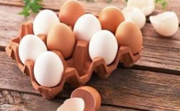 Почему яйца необходимо есть каждый день: ТОП-5 причин