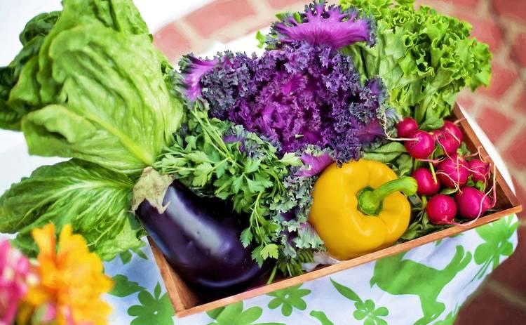 Как правильно дезинфицировать продукты перед употреблением