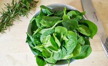 Шпинат – король зелени: польза и вред листового овоща