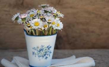 22 мая: какой сегодня праздник, приметы, именинники и запреты