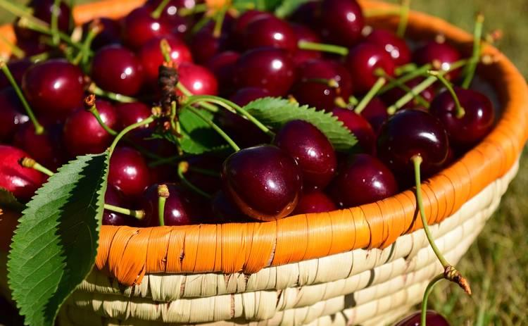 ТОП-5 полезных свойств черешни: малокалорийная и богата витаминами ягода