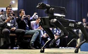 Вместо настоящей: в продаже появилась первая собака-робот за $74,5 тысячи