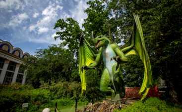 Мир драконов: каких мифических чудовищ можно увидеть этим летом в фэнтези-парке на ВДНГ