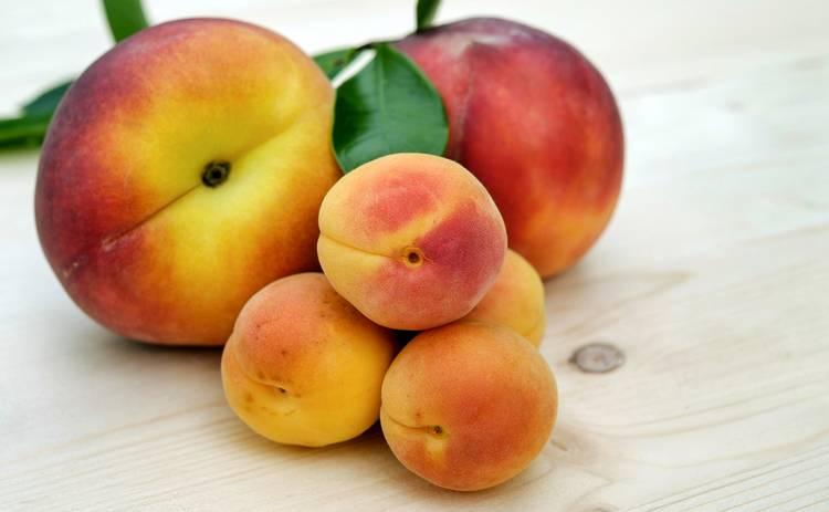 Кому категорически нельзя есть абрикосы