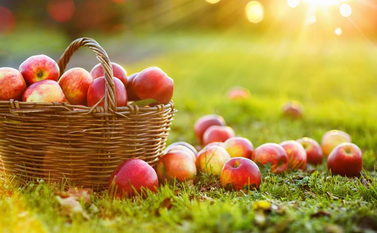 Поздравления с Яблочным спасом и Преображением Господним