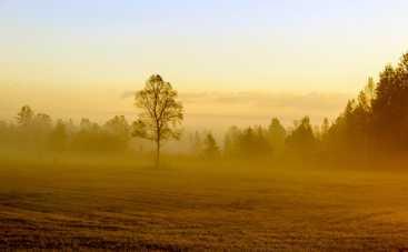 Поздравления с Ореховым спасом в стихах и прозе