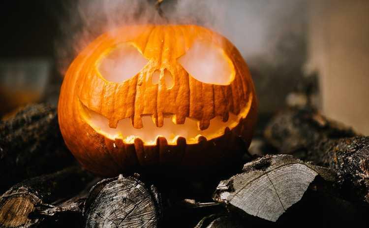 Квентин Тарантино посоветовал фильм на Хэллоуин-2020