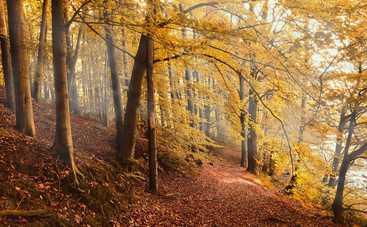 30 октября: какой сегодня праздник, приметы, именинники и запреты