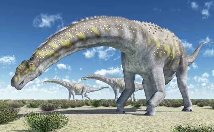 Ученые обнаружили фрагменты скелета самого крупного динозавра на Земле