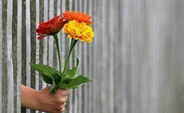 13 марта: какой сегодня праздник, приметы, именинники, что можно и нельзя делать в этот день