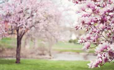 15 марта: какой сегодня праздник, приметы, именинники, что можно и нельзя делать в этот день