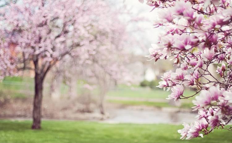 15 марта: какой сегодня праздник, приметы, именинники и запреты