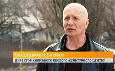 В программе «Утро с Интером» – о массовой вырубке деревьев в Киеве