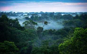 Утро с Интером: как звезды спасают планету от экологической катастрофы