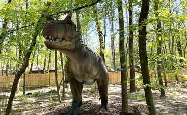 """Грозные хищники и гигантские травоядные: кого можно встретить в """"Планете динозавров"""" на ВДНГ"""