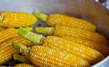 Кукуруза со специями в духовке (рецепт)