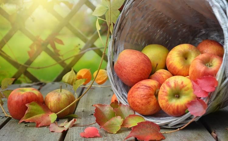 Поздравления с Яблочным спасом 2021 в стихах и прозе