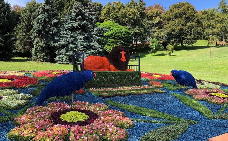 На Спивочем открылась выставка цветов