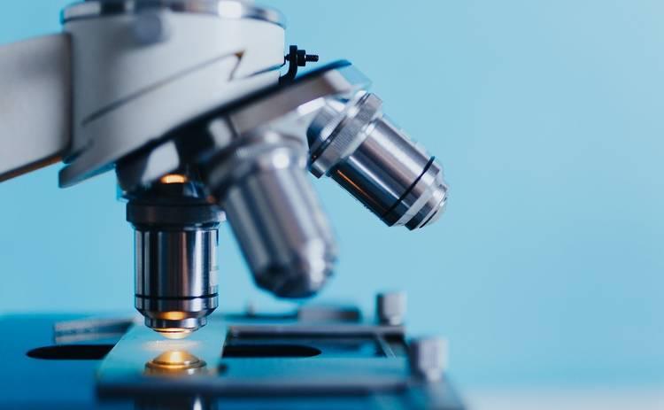 Врач рассказал, влияет ли группа крови на риск развития онкологии