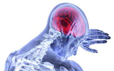 Риск инсульта после 30 лет возрастает: доктор Комаровский рассказал,  как избежать проблем