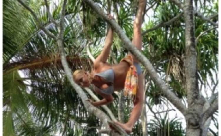 Анастасия Волочкова залезла на дерево