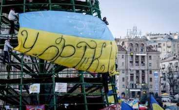Новый год 2015: куда переедет елка на Майдане